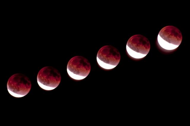 皆既月食写真